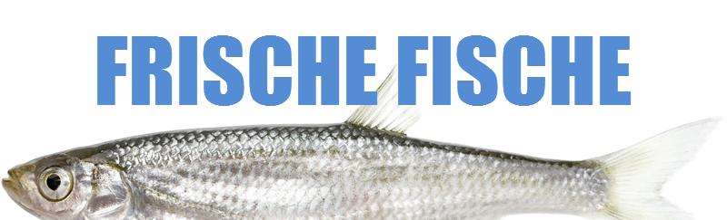 frische fische lebensmittel online kaufen
