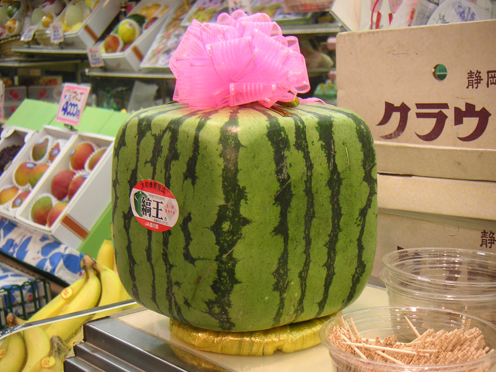 Wassermelonen als erfischender Durstlöscher im Sommer best food ever